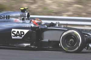 F1_Race_Ungarn_2014_-0004