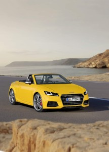 Audi_TTS_2015_10